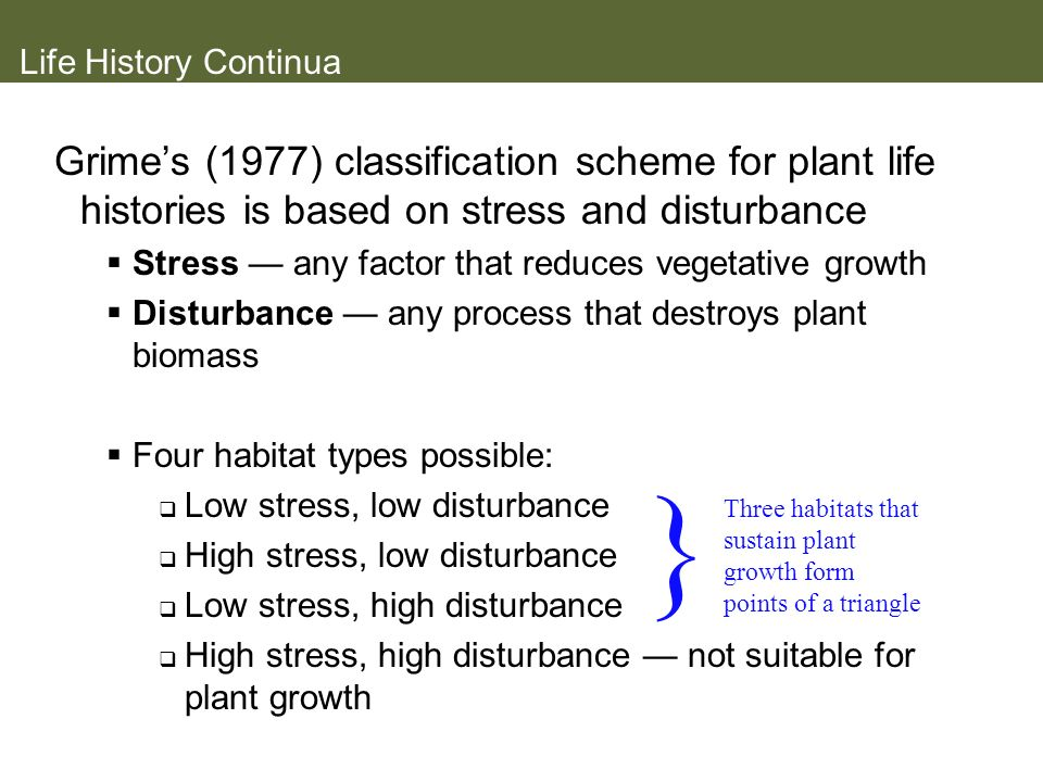 Life History Continua Grimes (1977) classification scheme for plant life histories is based on stress and disturbance Stress any factor that reduces v
