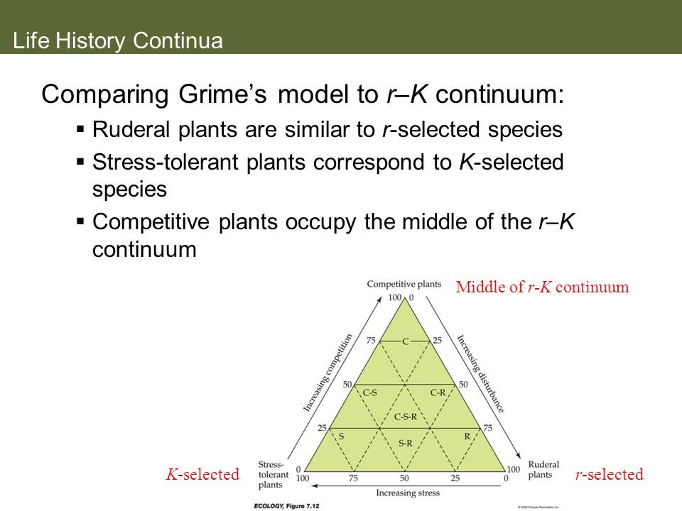 Life History Continua Comparing Grimes model to r–K continuum: Ruderal plants are similar to r-selected species Stress-tolerant plants correspond to K