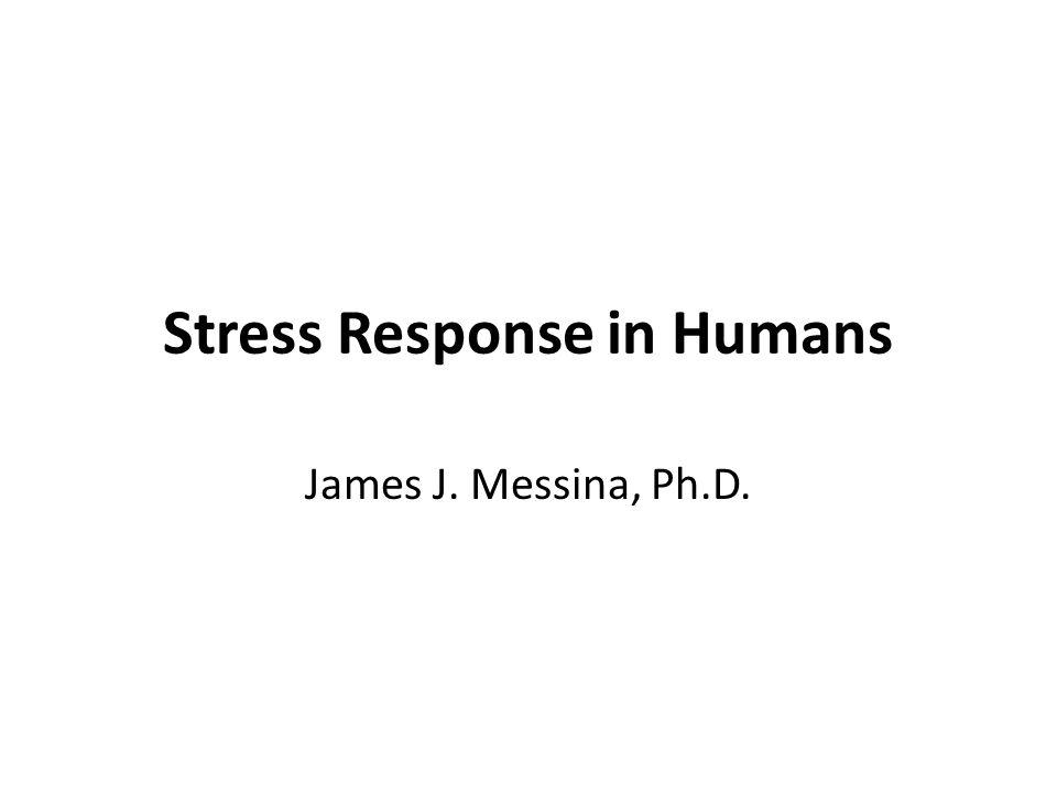 Stress Response in Humans James J. Messina, Ph.D.