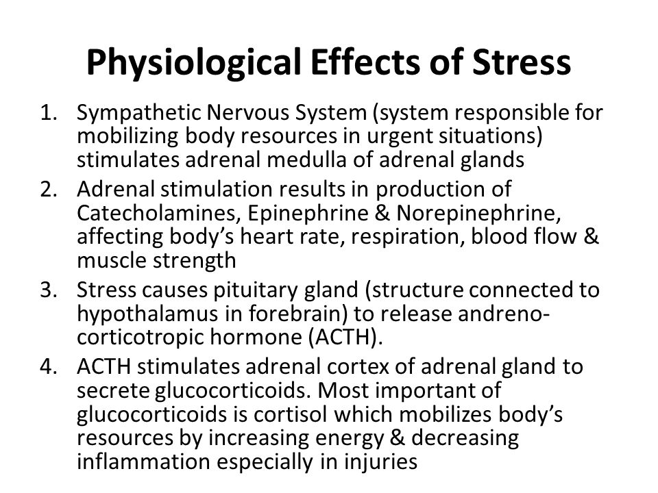 Physiological Effects of Stress 1.Sympathetic Nervous System (system responsible for mobilizing body resources in urgent situations) stimulates adrenal medulla of adrenal glands 2.Adrenal stimulation results in production of Catecholamines, Epinephrine & Norepinephrine, affecting bodys heart rate, respiration, blood flow & muscle strength 3.Stress causes pituitary gland (structure connected to hypothalamus in forebrain) to release andreno- corticotropic hormone (ACTH).