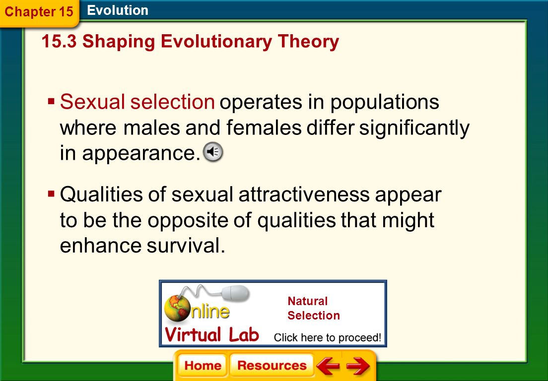 Evolution Disruptive selection is a process that splits a population into two groups. 15.3 Shaping Evolutionary Theory Chapter 15