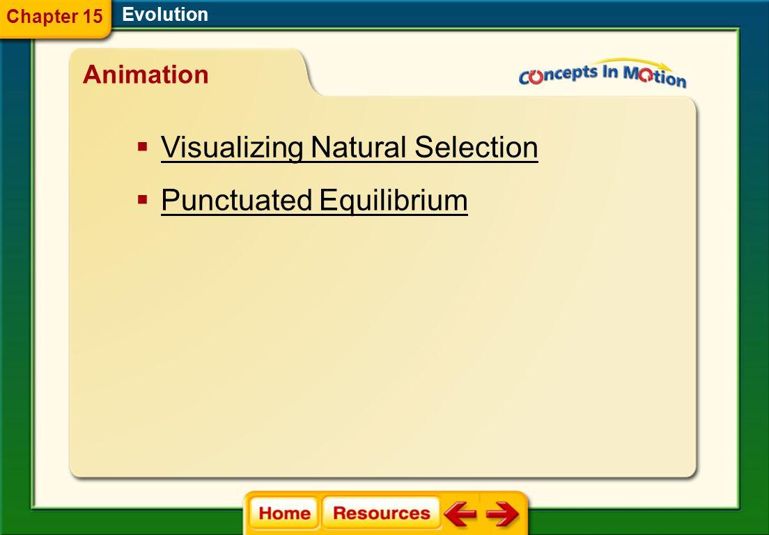 allopatric speciation postzygotic isolation mechanism sympatric speciation adaptive radiation gradualism punctuated equilibrium Evolution Vocabulary S