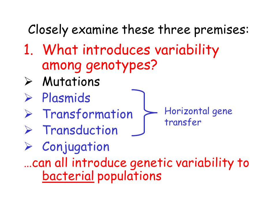 Closely examine these three premises: 1.What introduces variability among genotypes.