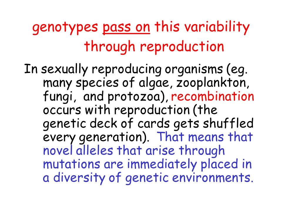 genotypes pass on this variability through reproduction