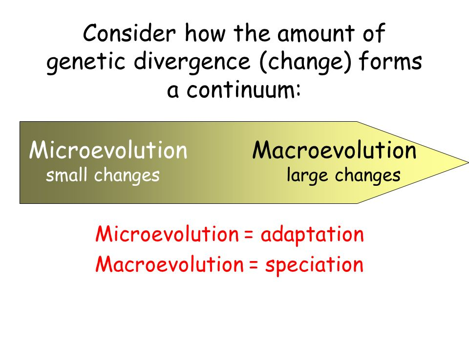Ecology = the study of interactions between organisms and their environment (physical, chemical and biological conditions) Evolution = changes in the genetic composition of a population with the passage of each generation = change in allelic frequency in populations over time (alleles are different versions of the same gene)