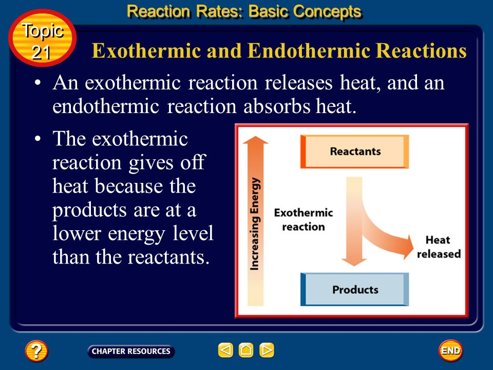 An exothermic reaction releases heat, and an endothermic reaction absorbs heat.