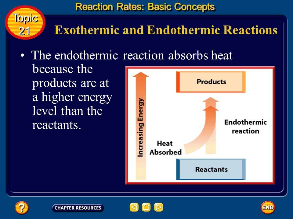Reaction Rates: Additional Concepts Reaction Rate Laws The equation that expresses the mathematical relationship between the rate of a chemical reaction and the concentration of reactants is called a rate law.