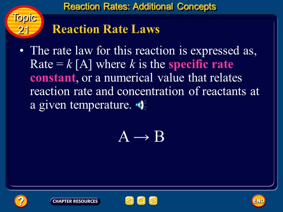 Reaction Rates: Additional Concepts Reaction Rate Laws The equation that expresses the mathematical relationship between the rate of a chemical reacti