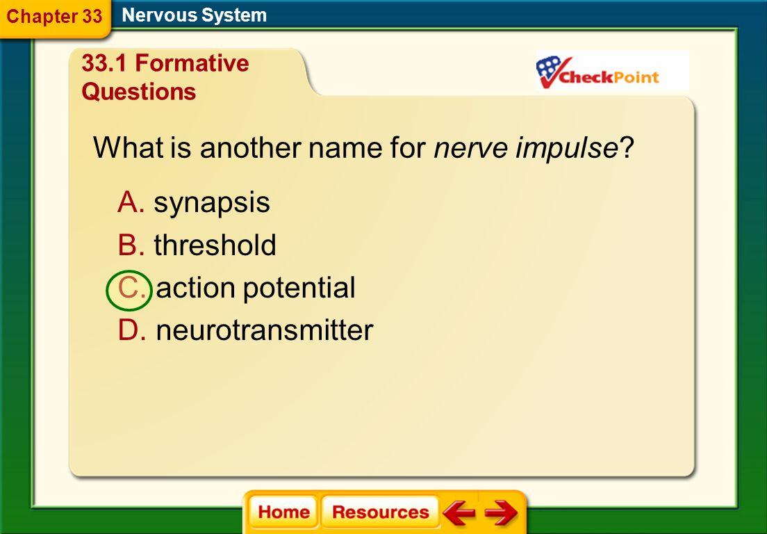 What type of neuron begins a reflex arc? A. interneuron B. motor neuron C. sensory neuron D. transmitter neuron Nervous System 33.1 Formative Question
