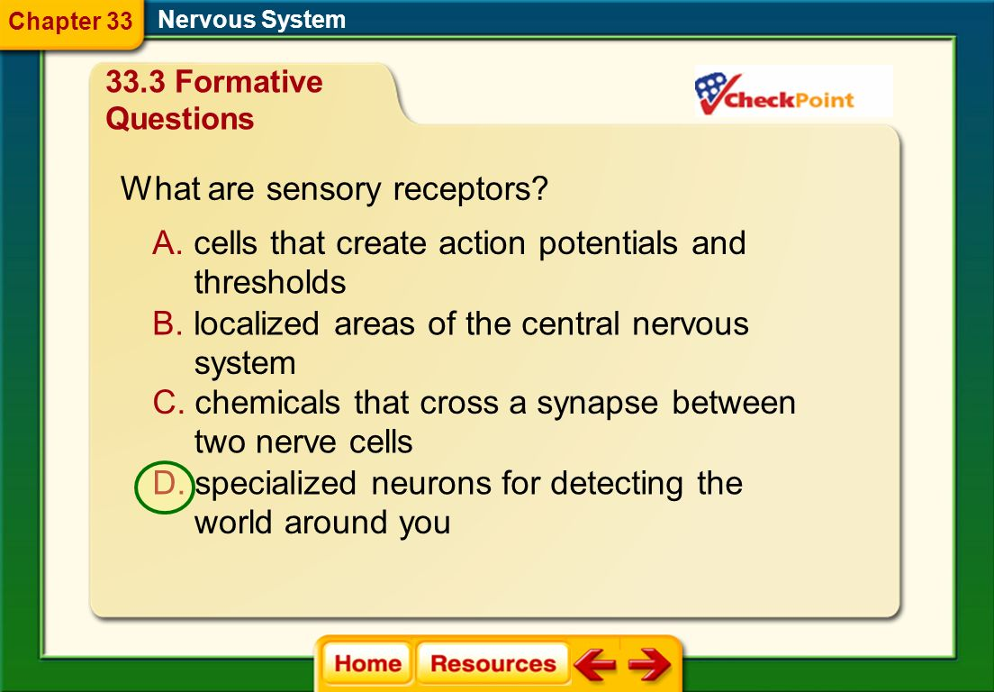 Nervous System What part of the nervous system is usually under voluntary control? A. autonomic nervous system B. somatic nervous system C. sympatheti