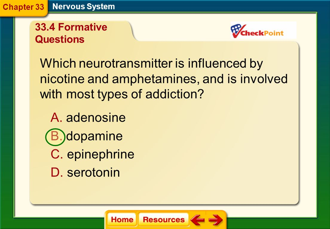 Nervous System Why is caffeine a drug? A. It is a depressant. B. It is an artificial substance. C. It influences the nervous system. D. It builds tole
