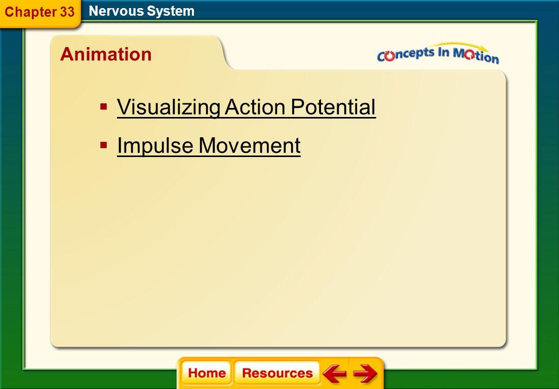 drug dopamine stimulant depressant tolerance addiction Nervous System Vocabulary Section 4 Chapter 33