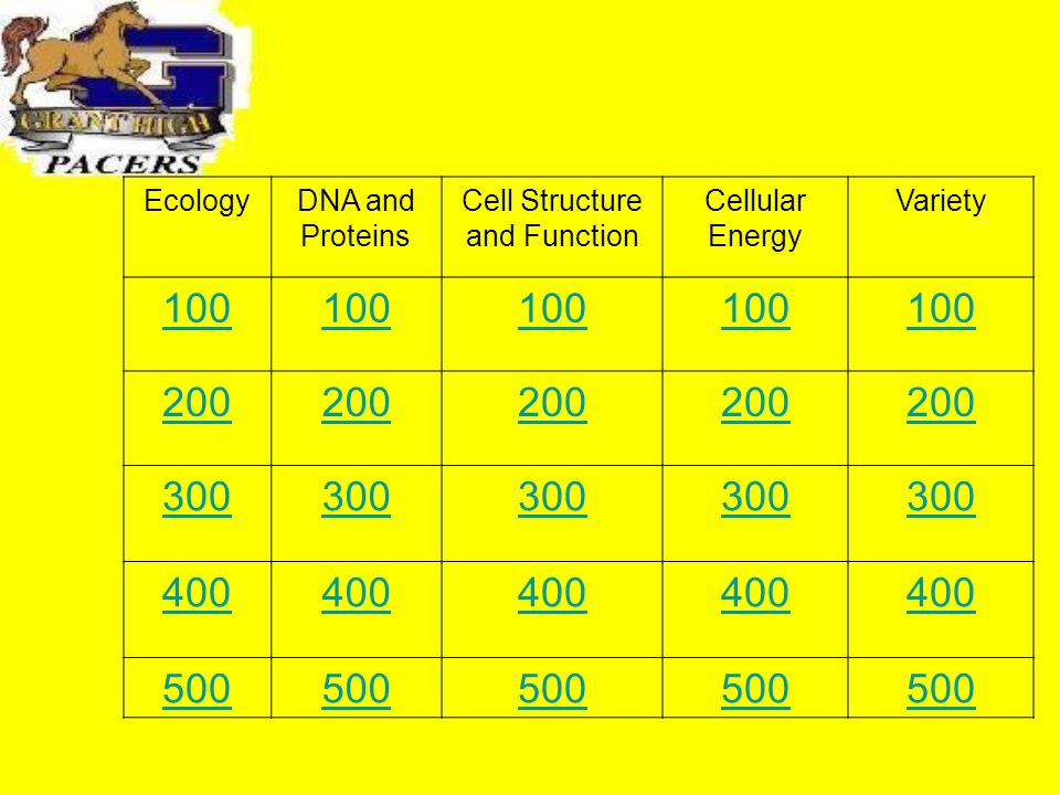 EcologyDNA and Proteins Cell Structure and Function Cellular Energy Variety 100 200 300 400 500