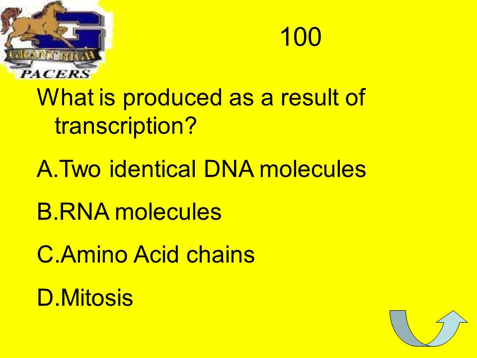 100 What is produced as a result of transcription.