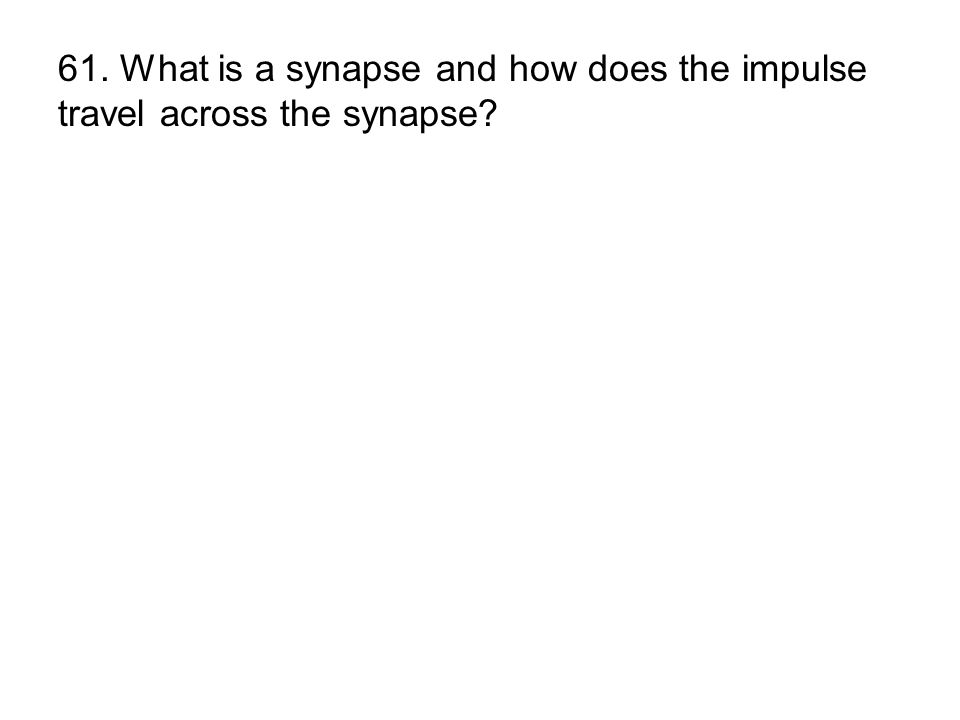 61. What is a synapse and how does the impulse travel across the synapse?
