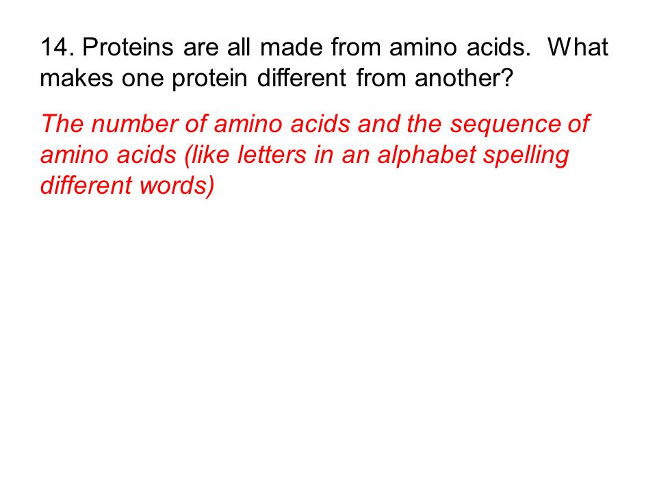 The number of amino acids and the sequence of amino acids (like letters in an alphabet spelling different words)