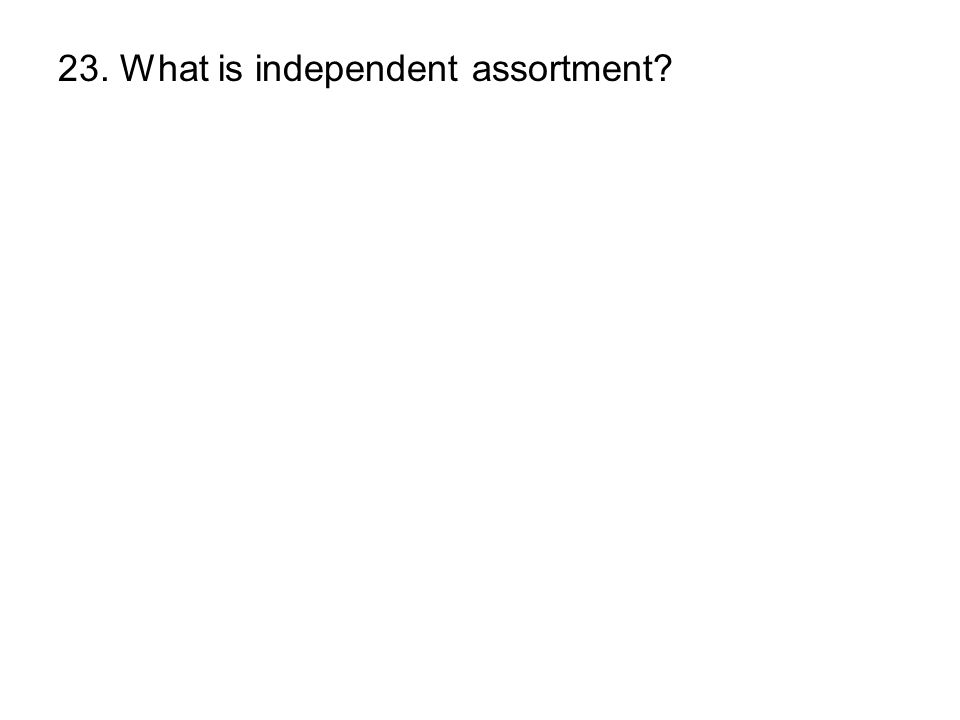 23. What is independent assortment?