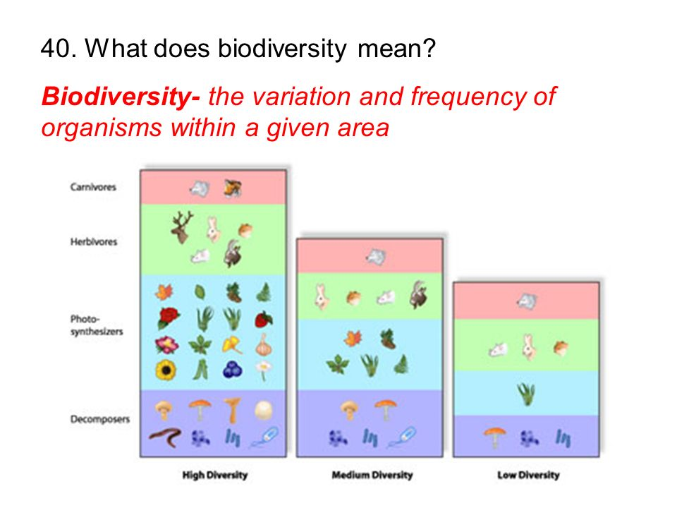 Biodiversity- the variation and frequency of organisms within a given area