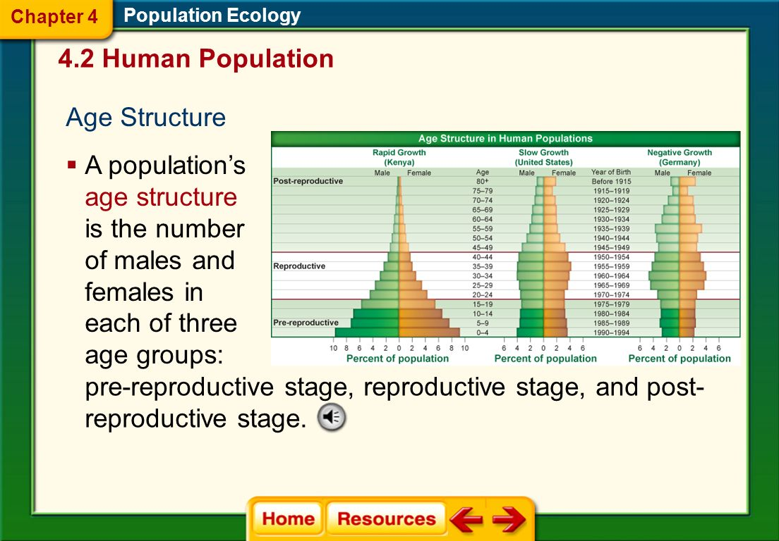 Zero population growth (ZPG) occurs when the birthrate equals the death rate. Population Ecology Zero Population Growth The age structure eventually s