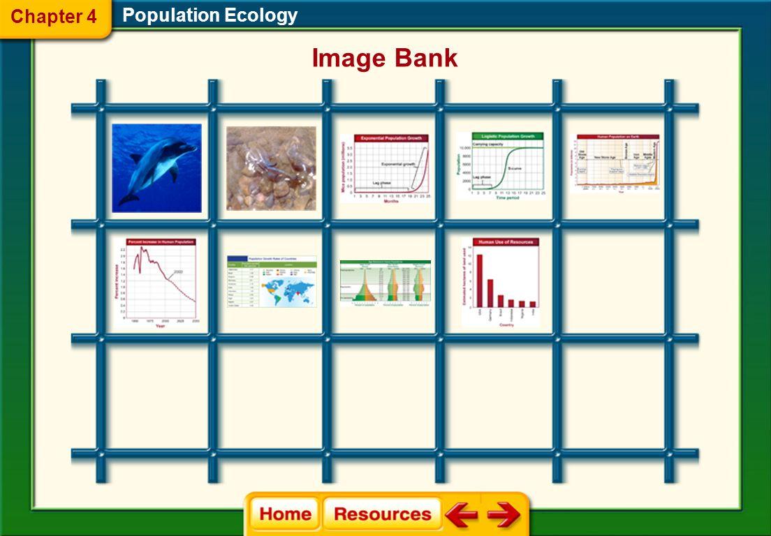 Population Ecology Glencoe Biology Transparencies Chapter 4