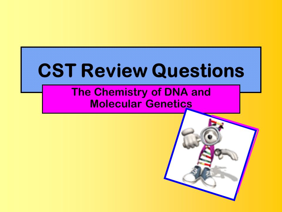 CST Review Questions The Chemistry of DNA and Molecular Genetics