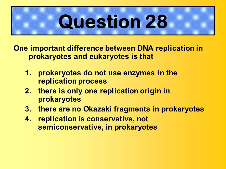 One important difference between DNA replication in prokaryotes and eukaryotes is that 1.prokaryotes do not use enzymes in the replication process 2.t