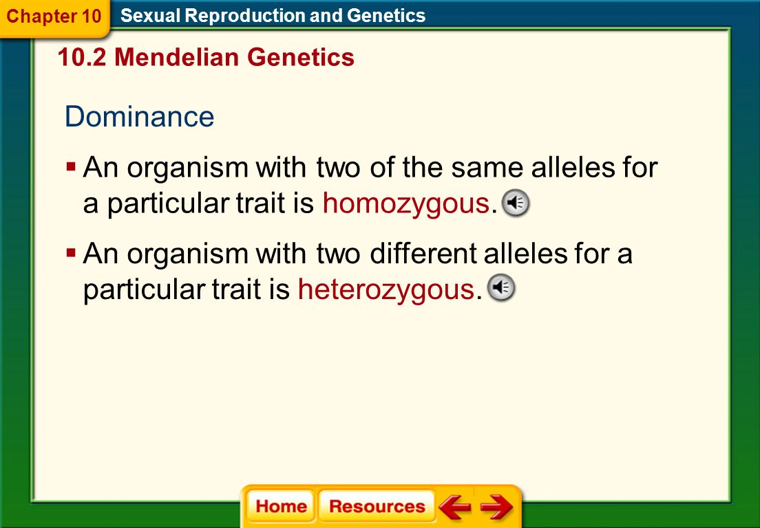 Genes in Pairs Sexual Reproduction and Genetics Allele An alternative form of a single gene passed from generation to generation Dominant Recessive 10