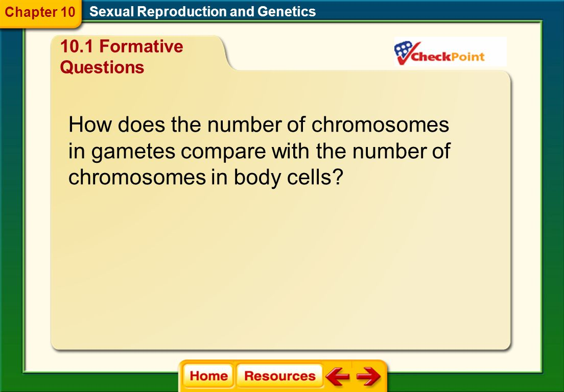 What is the term for a pair of chromosomes that have the same length, same centromere position, and carry genes that control the same traits? Sexual R