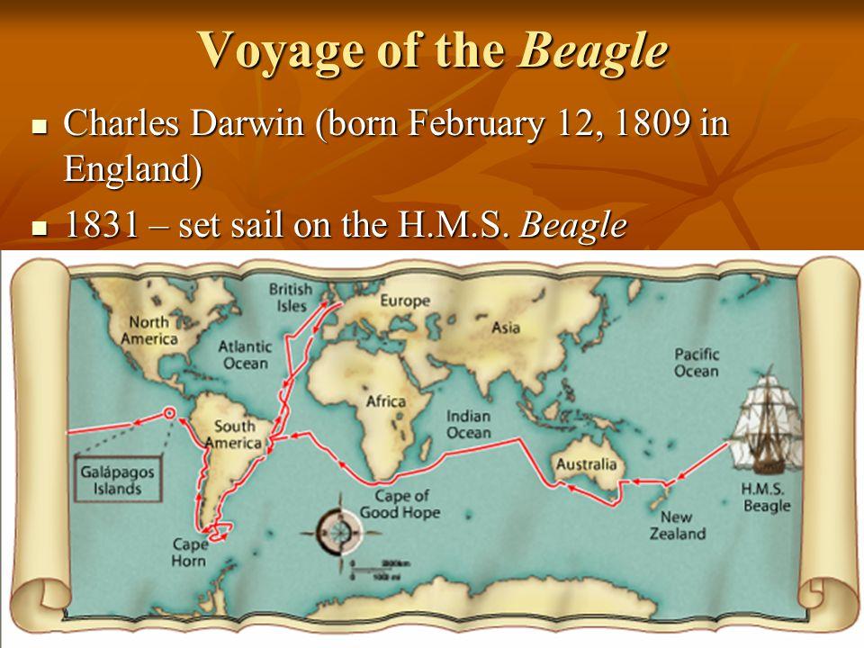 3 Voyage of the Beagle Charles Darwin (born February 12, 1809 in England) Charles Darwin (born February 12, 1809 in England) 1831 – set sail on the H.