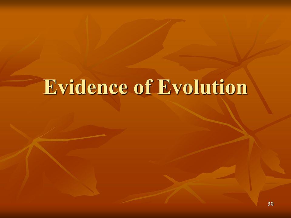 30 Evidence of Evolution