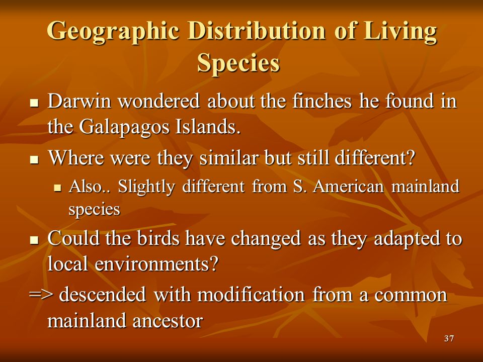 37 Geographic Distribution of Living Species Geographic Distribution of Living Species Darwin wondered about the finches he found in the Galapagos Isl