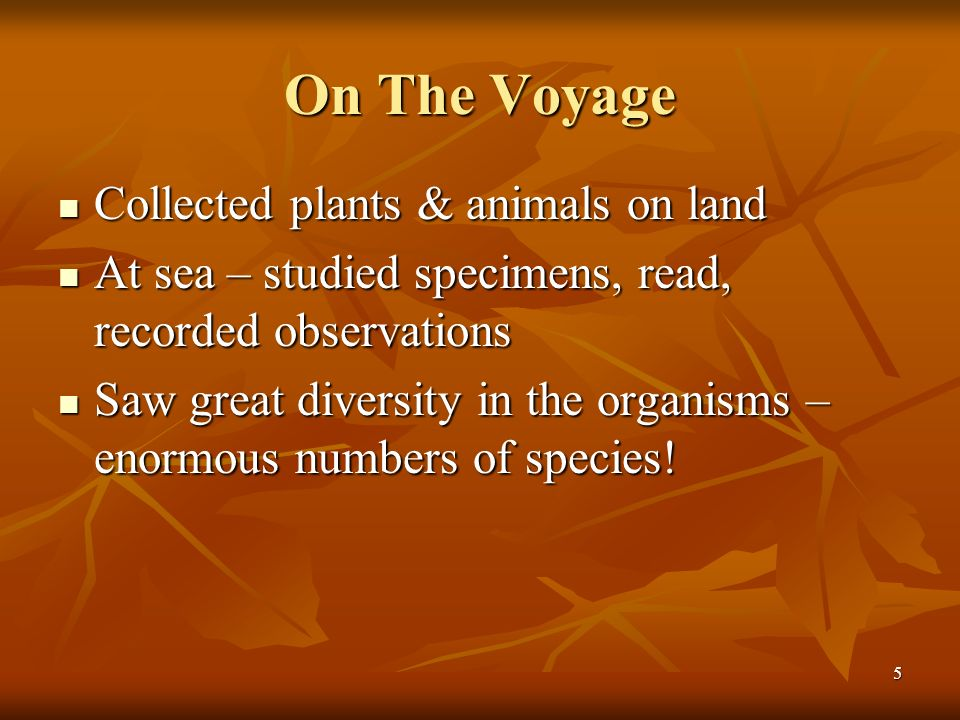 5 On The Voyage Collected plants & animals on land Collected plants & animals on land At sea – studied specimens, read, recorded observations At sea –