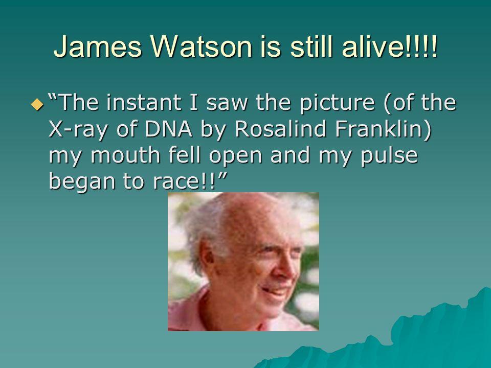 James Watson is still alive!!!.