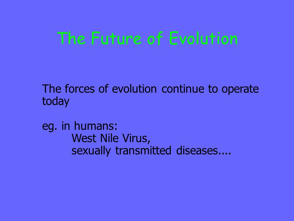 The Future of Evolution The forces of evolution continue to operate today eg. in humans: West Nile Virus, sexually transmitted diseases....