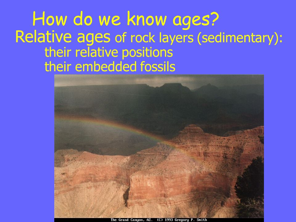 How do we know ages? Relative ages of rock layers (sedimentary): their relative positions their embedded fossils