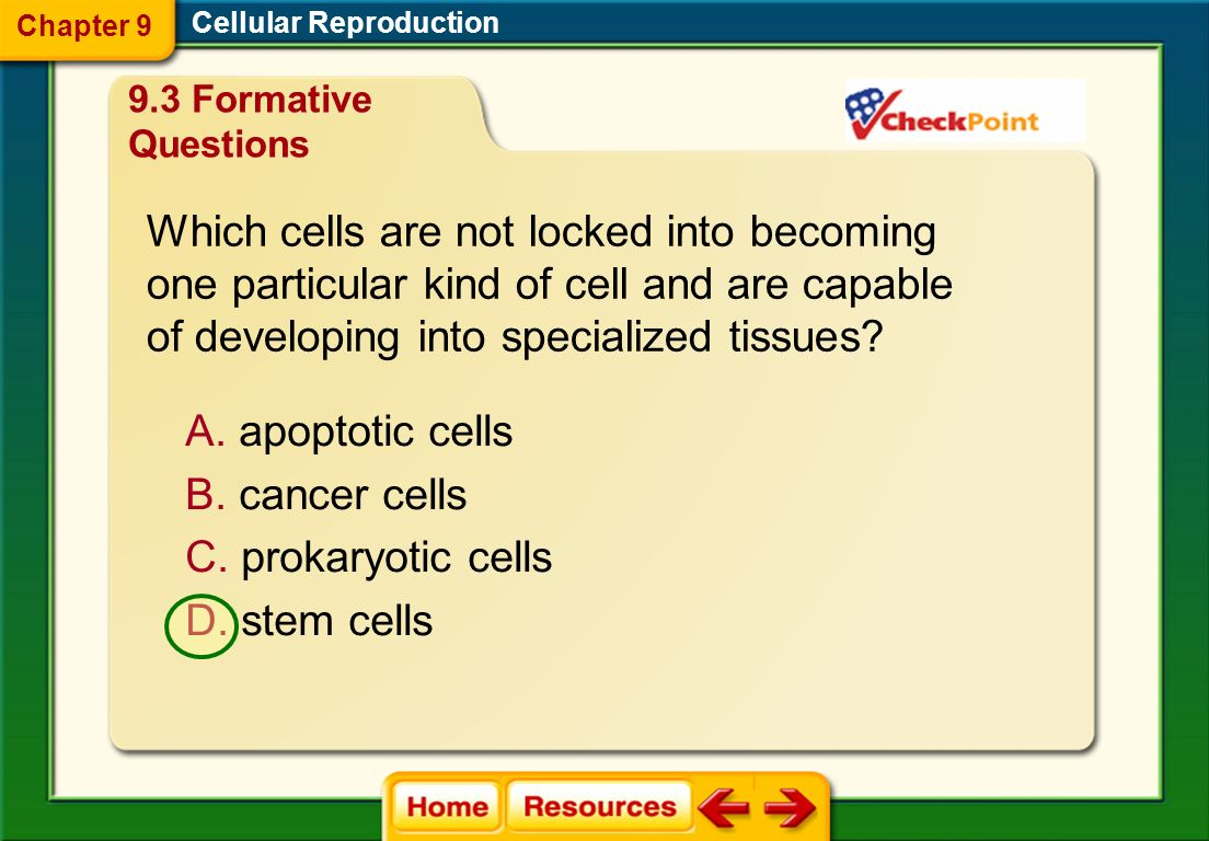 What is the term for the programmed death of cells that are damaged beyond repair or have harmful changes in their DNA? Cellular Reproduction A. apopt