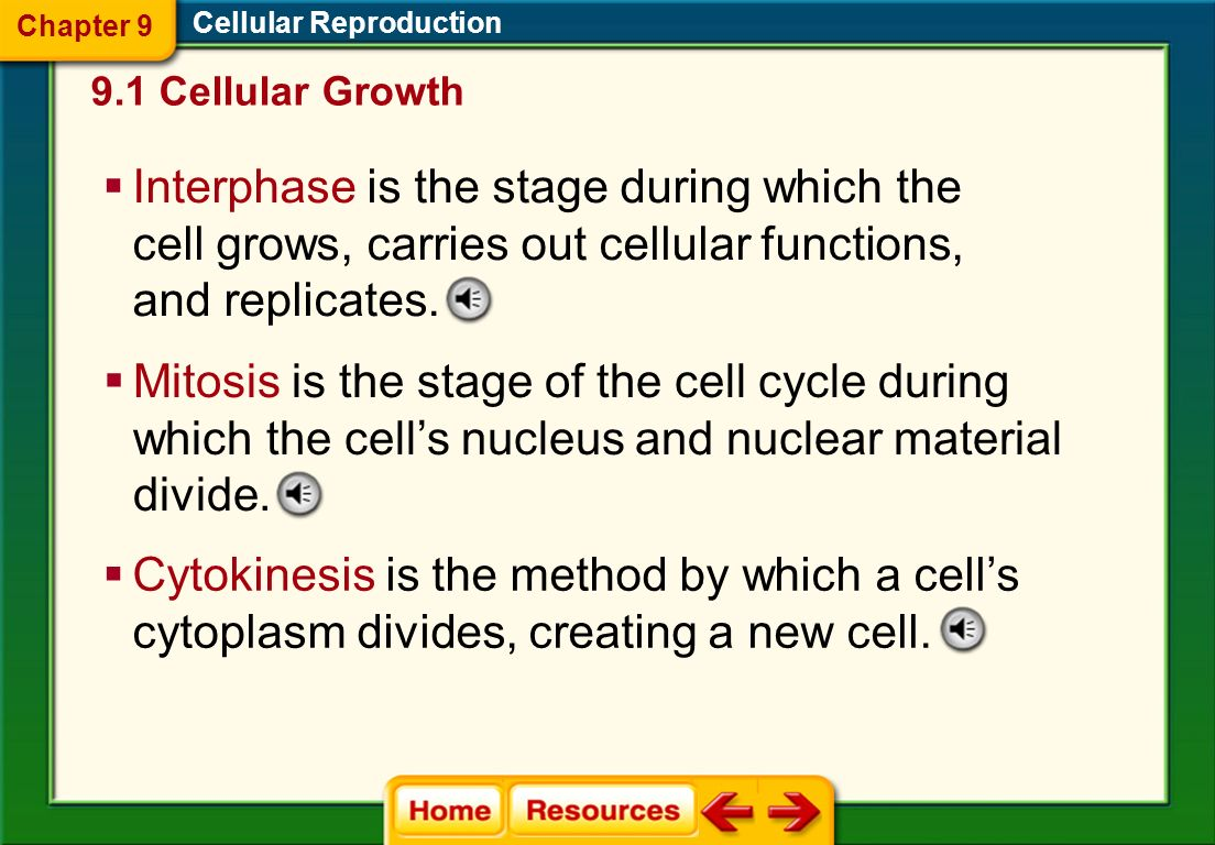 The Cell Cycle Cell division prevents the cell from becoming too large. It also is the way the cell reproduces so that you grow and heal certain injur