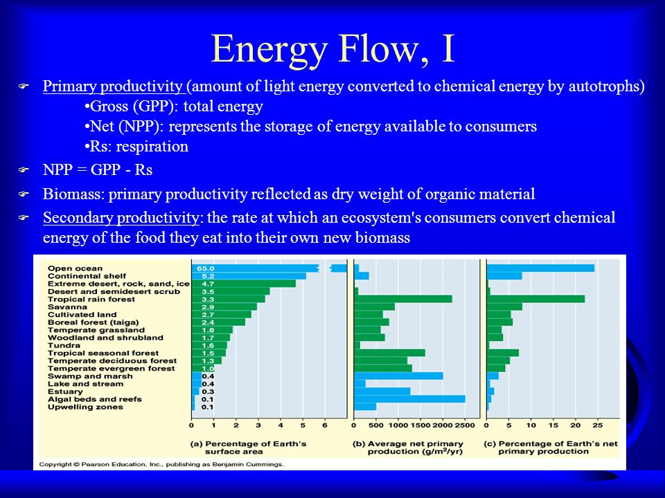 Energy Flow, I F Primary productivity (amount of light energy converted to chemical energy by autotrophs) Gross (GPP): total energy Net (NPP): represe