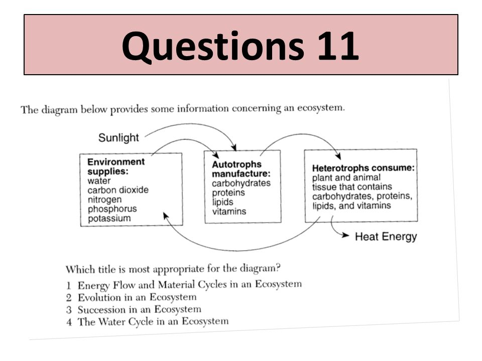 Questions 11