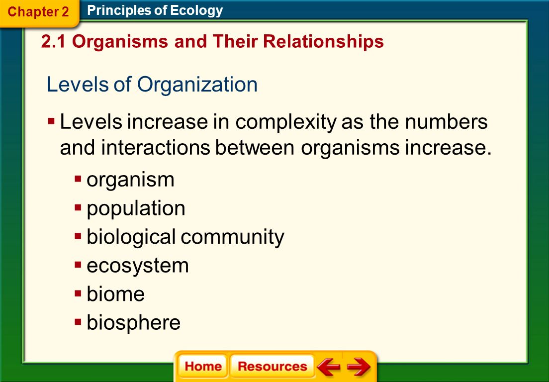 Levels of Organization Principles of Ecology Levels increase in complexity as the numbers and interactions between organisms increase.