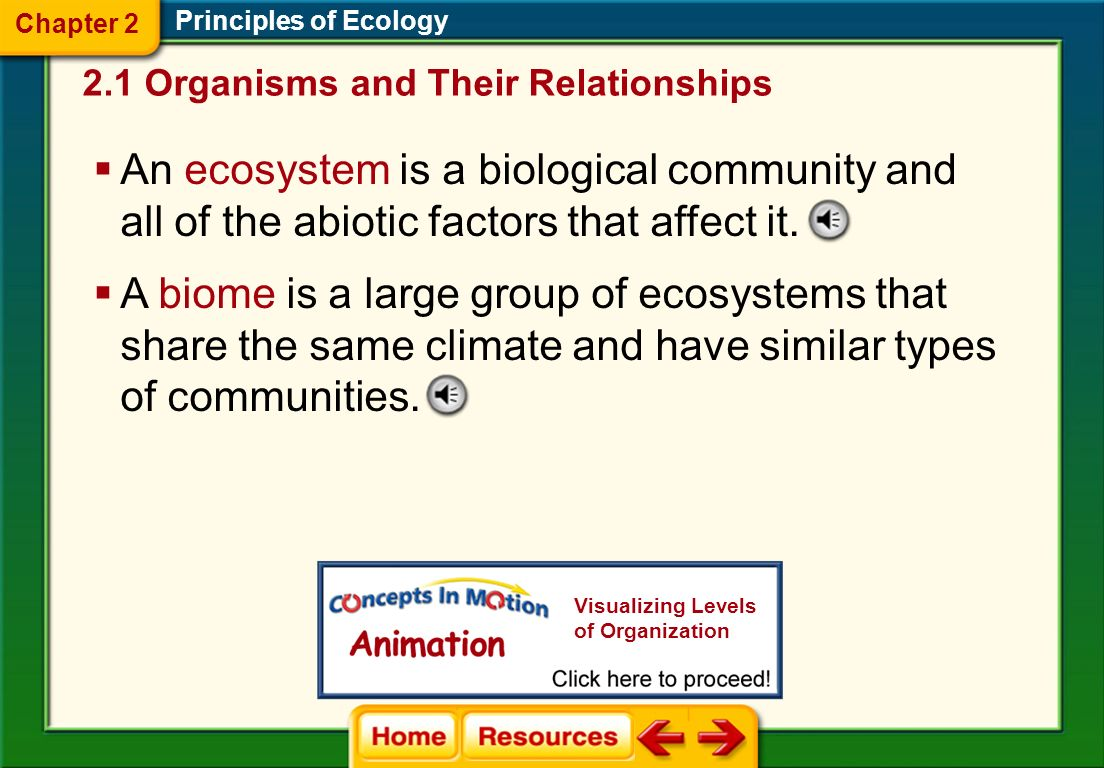 The lowest level of organization is the individual organism itself. Principles of Ecology Organisms of a single species that share the same geographic