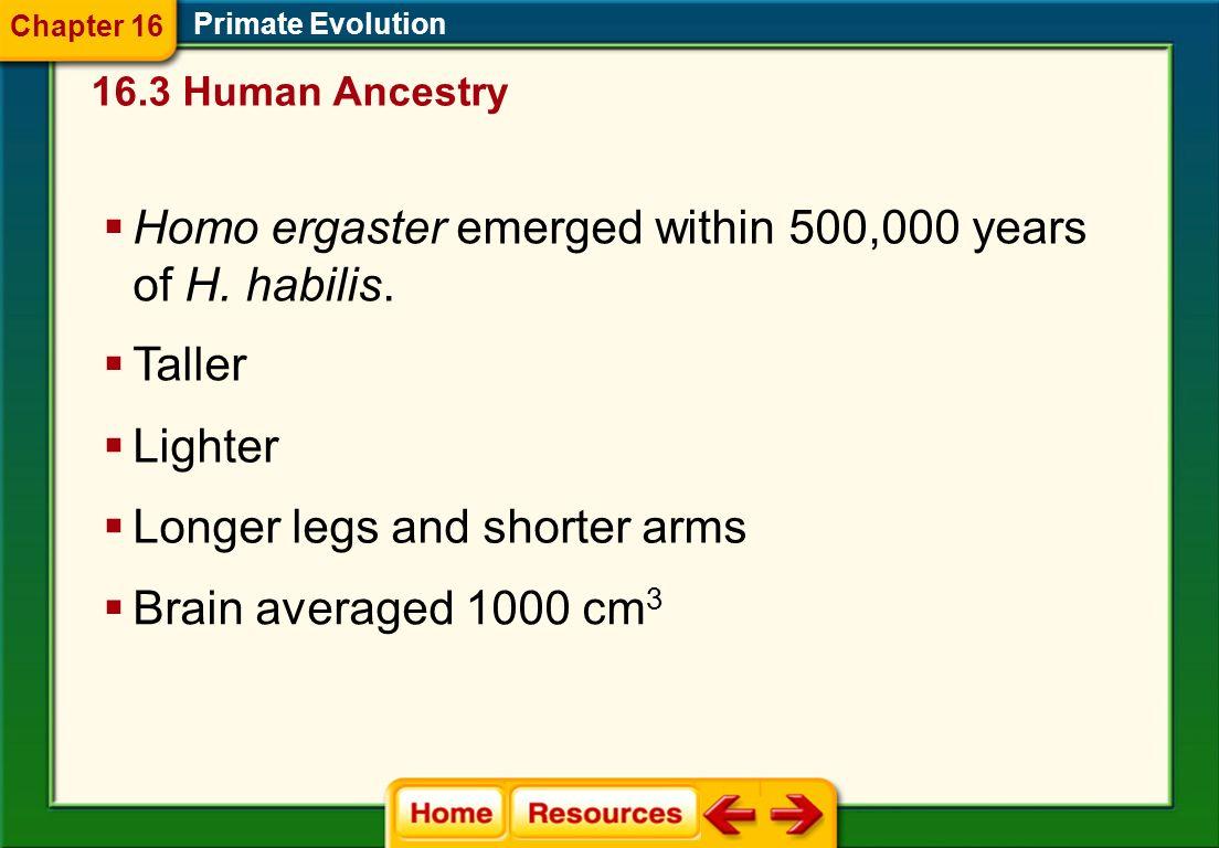 Primate Evolution Homo habilis 16.3 Human Ancestry Chapter 16