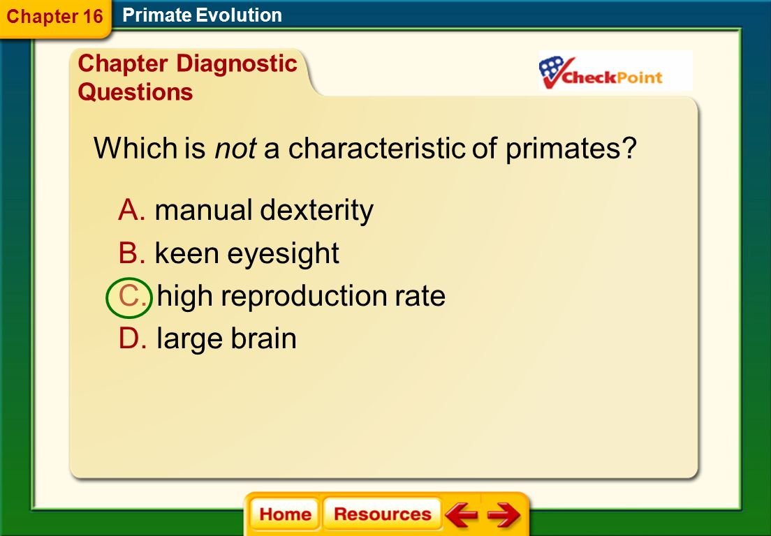 Primate Evolution Chapter Resource Menu Chapter Diagnostic Questions Formative Test Questions Chapter Assessment Questions Standardized Test Practice