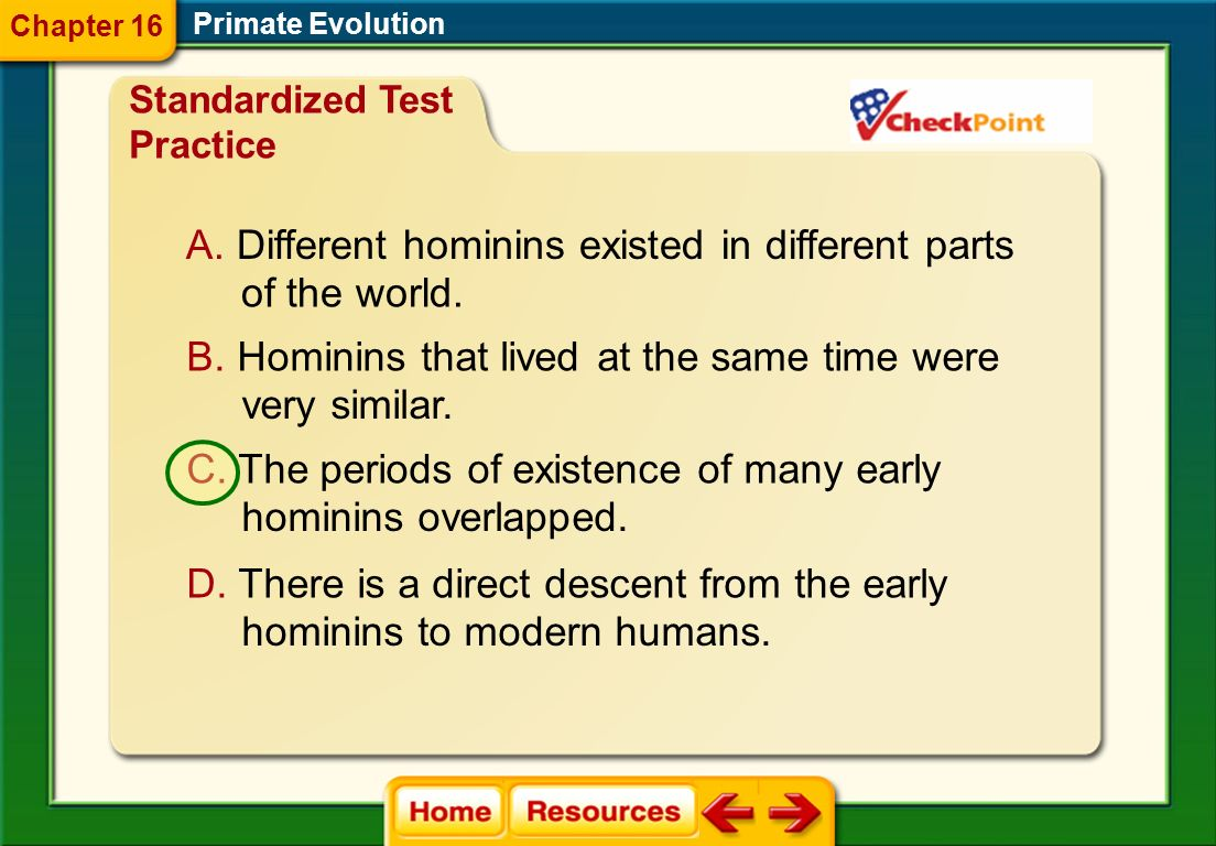 What does the early human timeline show about the evolution of hominins? Primate Evolution Chapter 16 Standardized Test Practice