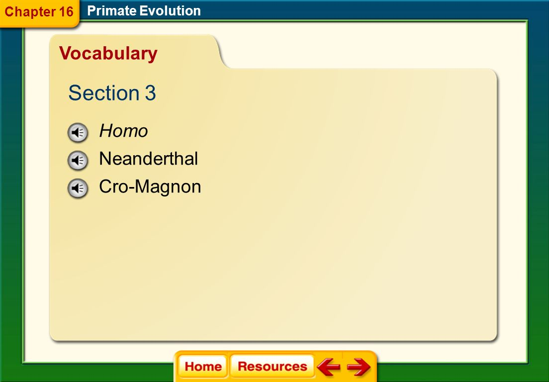 hominoid bipedal australopithecine Primate Evolution Chapter 16 Vocabulary Section 2