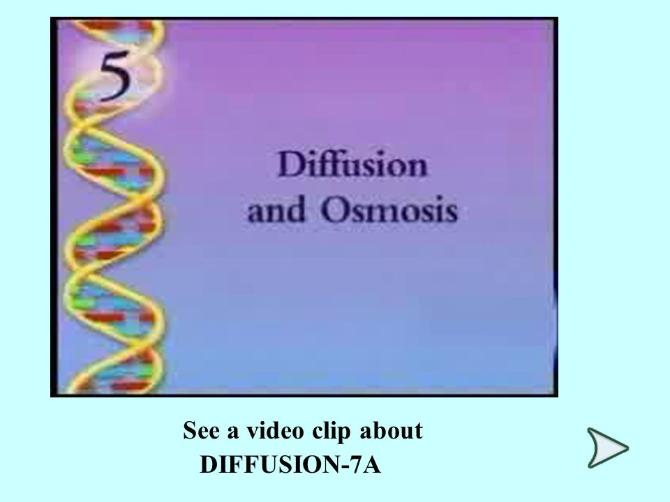 See a video clip about DIFFUSION-7A