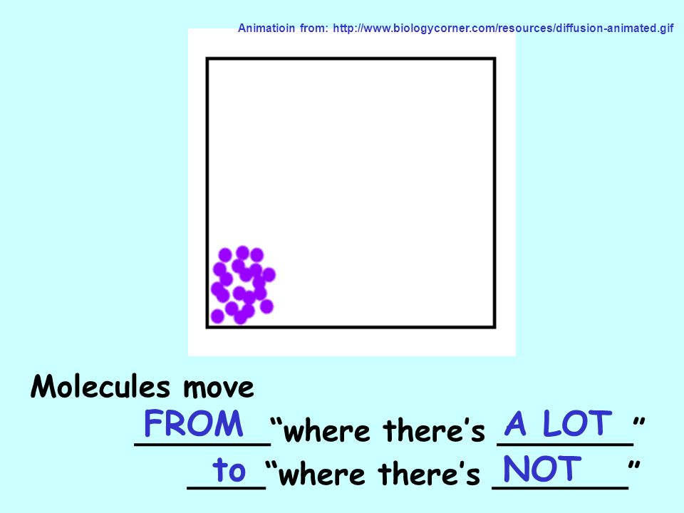 Molecules move _______where theres _______ ____where theres _______ Animatioin from: http://www.biologycorner.com/resources/diffusion-animated.gif FRO