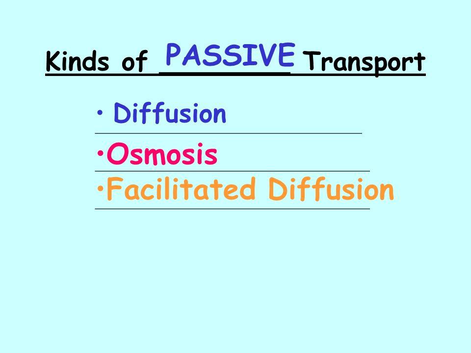Kinds of ________ Transport Diffusion Osmosis Facilitated Diffusion __________________________________ ___________________________________ PASSIVE