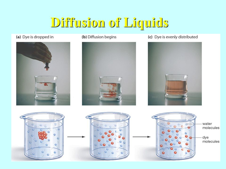 Diffusion of Liquids