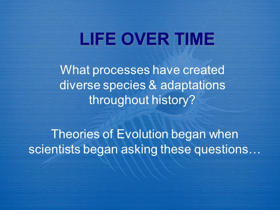 What is a Scientific Theory.